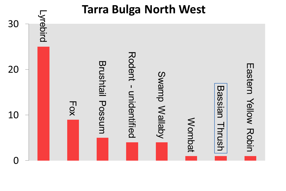 Tarra Bulga North West