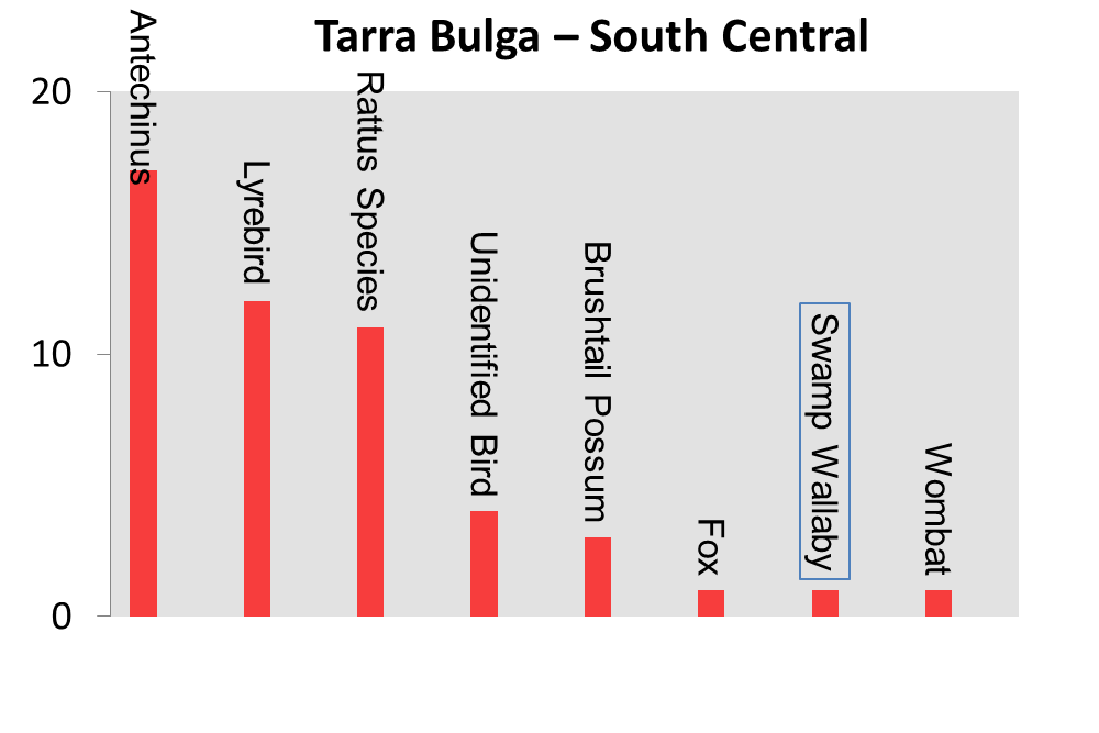 Tarra Bulga South Central