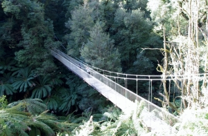The iconic suspension bridge