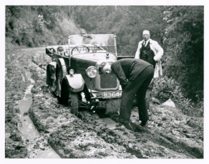Car at Tarra Valley