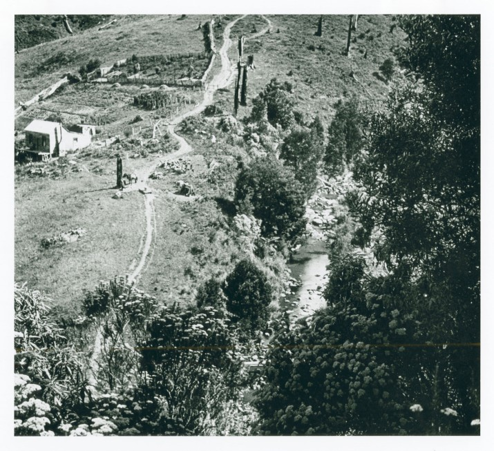 Hill farm in the Tarra Valley - (Source:  Monash Uni Gipps Studies)