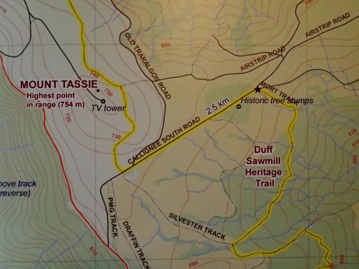 Mt Tassie Map