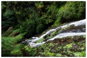 Tarra Falls (on Tarra Valley Rd)