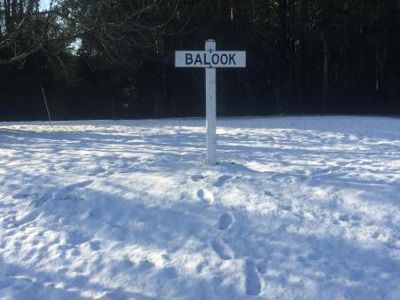 Welcome to Balook