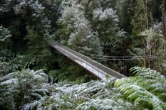 Suspension bridge in the snow