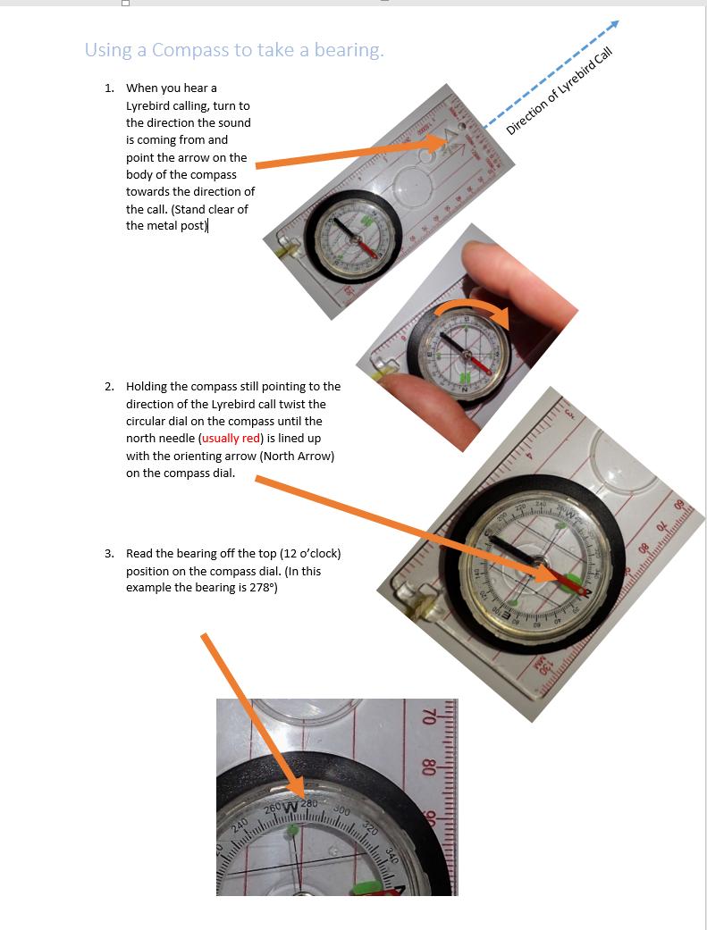 Lyrebird count compass bearings