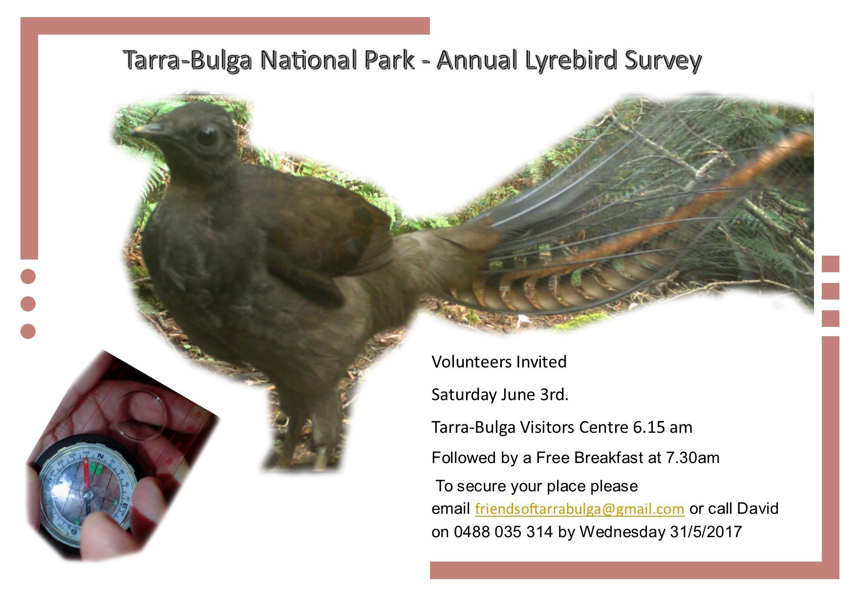 Lyrebird Survey 2017